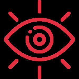vision-ico